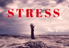 Estrés: ayuda